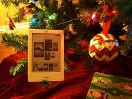 Getting an eReader for Christmas? Try the library for free books - Halifax News Net | Professional development of Librarians | Scoop.it