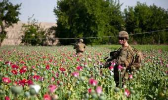 Afghanistan: It's the Heroin, Stupid By Pepe Escobar | Saif al Islam | Scoop.it
