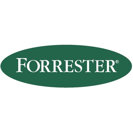 Forrester 2014 : les budgets iront plus vers le digital que vers la télévision d'ici 5 ans | I am a Bridge Clipboard | Scoop.it