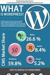 A Definitive Guide To PSD To WordPress Conversion Process (Infographic) | Web Design | Scoop.it
