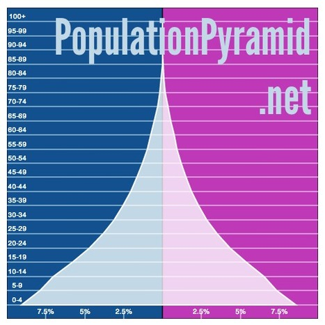 PopulationPyramid.net | Ms. Postlethwaite's Human Geography Page | Scoop.it