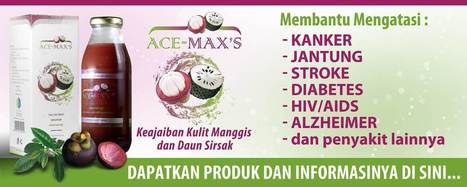 Ace Maxs Batam | Agen Penjualan Ace Maxs Batam | Herbal Medicine | Scoop.it