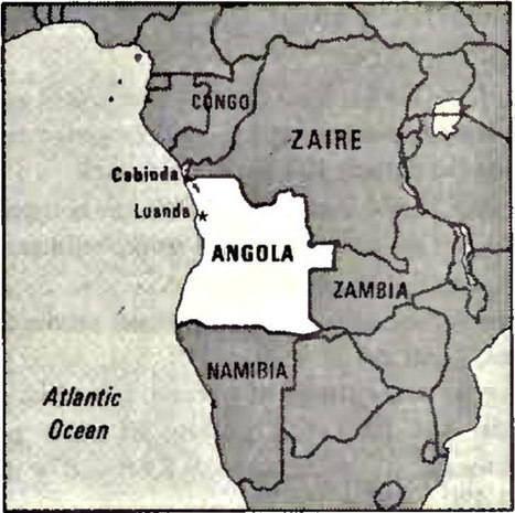 Yellow fever outbreak: 37 dead in Angola | Virology News | Scoop.it