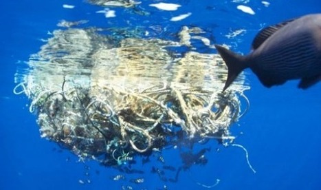 Newly Discovered 'Plastic Island' in Oceans Shows Global Epidemic Worsening | OUR OCEANS NEED US | Scoop.it