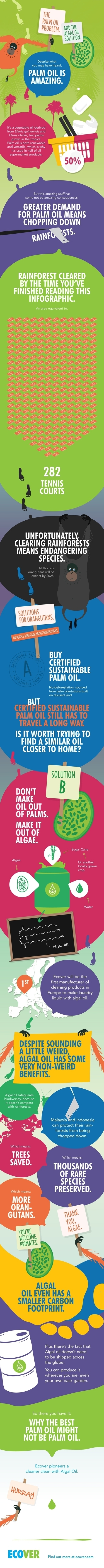 Algal Oil - the alternative to  Palm Oil Infographic | Organic & natural market | Scoop.it