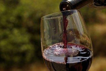 La route des nouveaux vins du Liban | Vins | Charliban Lebnen | Scoop.it