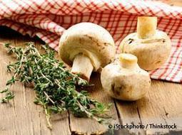 The Many Health Benefits of Eating Mushrooms   Mushrooms and Health   Scoop.it