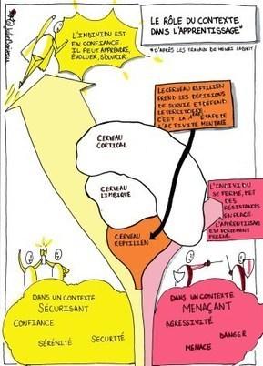 Le rôle du contexte dans l'apprentissage | Numérique & pédagogie | Scoop.it