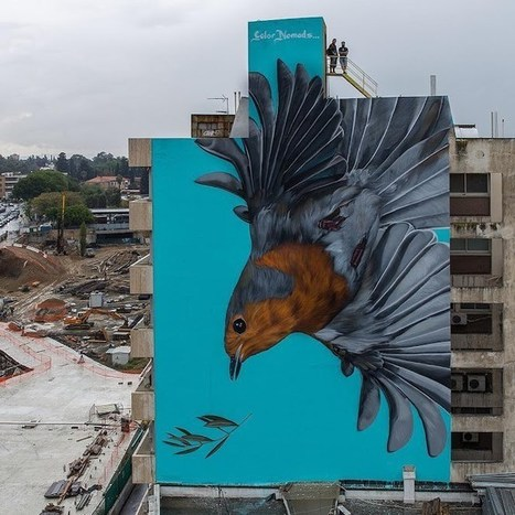 Cyprus Street Art Festival Report, Nicosia - Street I Am - | Street Art Planet | Scoop.it