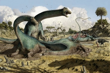 Jurassic Boneyard Yields Hidden Dinosaur – Phenomena: Laelaps | Nature enviroment and life. | Scoop.it