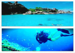 Your Guide to Similan Island Diving | oktaviadivecenter.com | Scoop.it