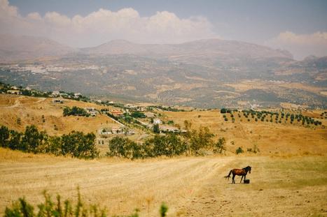 Landscapes of Andalusia   Jonas Dyhr Rask   Fujifilm X Series APS C sensor camera   Scoop.it