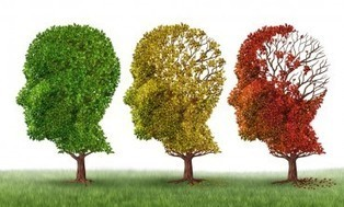 Déclin cognitifou Alzheimer: Un tournant décisif à la quarantaine   Maigrir vite   Scoop.it