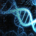 DNA Computing: What Will the Programing Language Be? | SynBioFromLeukipposInstitute | Scoop.it