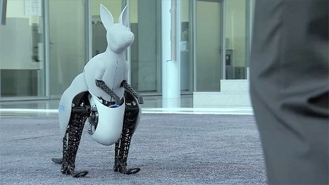 Bionic hopping kangaroo unveiled by German scientists - video | Managing Technology and Talent for Learning & Innovation | Scoop.it
