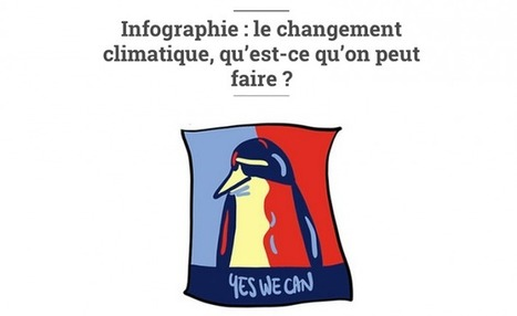 Infographie : 5 actions contre le changement climatique | Coulisses de demain ? | Scoop.it