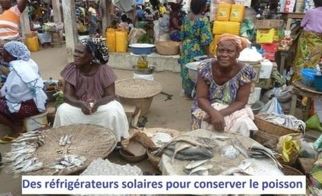 Des réfrigérateurs solaires pour le Bénin (vendeuses de poissons) | Actions Panafricaines | Scoop.it