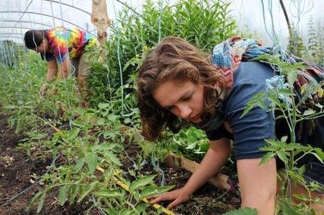 Agritourisme: quand les agriculteurs partagent leur univers avec le grand public | Le monde rural et touristique | Scoop.it