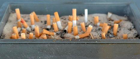 Didier Raoult - Le tabac, c'est l'impôt sur les pauvres !   Je ne fume plus!   Scoop.it