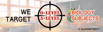 O Level Biology Tuition | Biology Tuition | Scoop.it