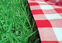 Where to picnic in Paris - Paris.fr | Paris Lifestyle | Scoop.it