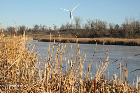 Over 70 percent of Americans: climate change worsening extreme weather | Développement durable et efficacité énergétique | Scoop.it