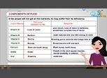 Class VI Science Test Video | scholars learning | Scoop.it
