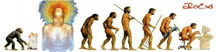 Stoned Ape Theory | The Asymptotic Leap | Scoop.it