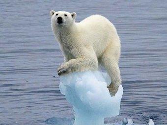 Réchauffement climatique, gaz à effet de serre et patin couffin | ifremer | Scoop.it