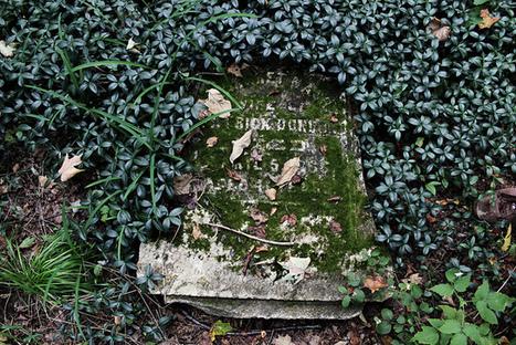 How doctors die | Doctor | Scoop.it