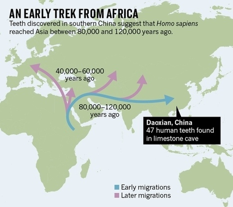 Teeth from China reveal early human trek out of Africa : Nature News & Comment | Kaogu | Scoop.it