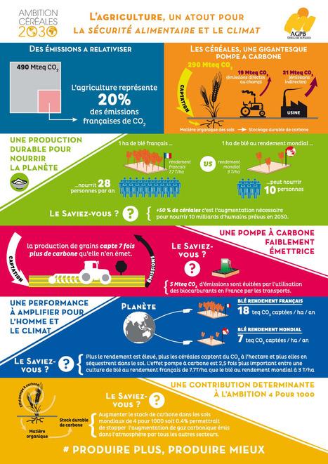 les agri-infographies de @AGPB_cerealiers | Ecologie, Agro-écologie, Enseignement agricole | Scoop.it