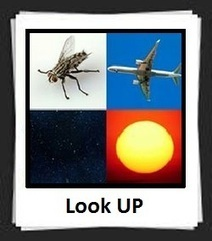 100 Pics Look UP Answers | 100 Pics Answers | 100 Pics Quiz Answers | Scoop.it