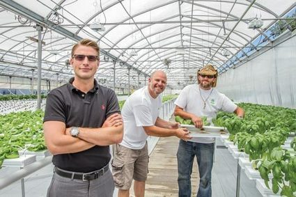 Local business aims to create sustainable food, jobs | Toledo Newspaper | Vertical Farm - Food Factory | Scoop.it