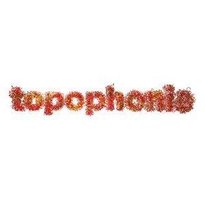 La musique dans l'espace : Topophonie, scénophonie, géophonie | DESARTSONNANTS - CRÉATION SONORE ET ENVIRONNEMENT - ENVIRONMENTAL SOUND ART - PAYSAGES ET ECOLOGIE SONORE | Scoop.it