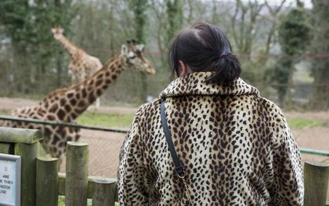 Why humans evolved to love watching animals | Skylarkers | Scoop.it