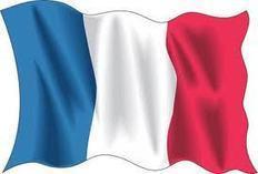 [Descarga] Curso formación online gratis de francés (libro tutorial) | Formación Online | Idiomas | Scoop.it