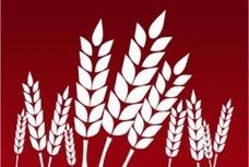 High food prices delay world's Millennium devt goals | Vertical Farm - Food Factory | Scoop.it