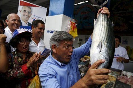 Un candidato presidencial de Perú cometió plagio en su tesis doctoral   Propiedad intelectual e industrial-Jabetza intelektuala eta Jabetza industriala   Scoop.it