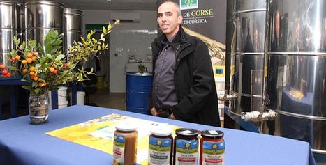 Le groupe Carrefour soutient la filière du miel de Corse - Corse Net Infos | Le développement durable en Corse | Scoop.it