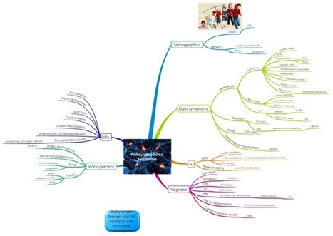 The Biggerplate Blog: Mind Maps in Action: Learning Paediatric Medicine | Art of Hosting | Scoop.it