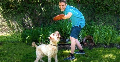 L'étiquette au parc canin | Vaudreuil-Soulanges.tv | Modern dog training methods and dog behavior | Scoop.it
