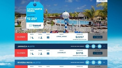 Transat offers fun to the highest bidder | Campaigns and Strategies - Marketing with Impact | Scoop.it