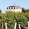 Bordeaux Wines Weekly