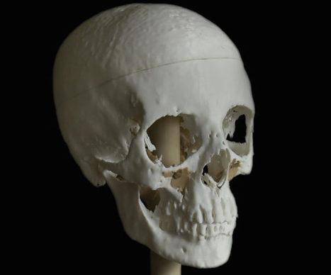 Reconstruyen en 3D la cabeza momificada de una bella joven egipcia de hace 2.000 años   Arqueología, Historia Antigua y Medieval - Archeology, Ancient and Medieval History byTerrae Antiqvae   Scoop.it