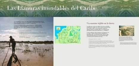 Museo del Oro Zenú (4) | banrepcultural.org | Environment, Risk Management and Engineering - Medio Ambiente, Gestión del Riesgo e Ingeniería. | Scoop.it