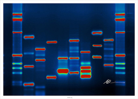 Does Entrepreneurship Need To Be In Your Genes? - Forbes | entrepreneur | Scoop.it