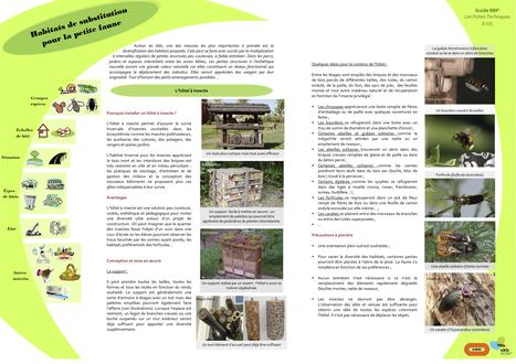 GUIDE BIODIVERSITÉ POSITIVE : Conception :  fiches pratiques | Biodiversité positive.fr | biodiversité | Scoop.it