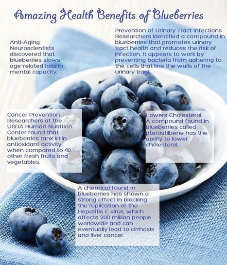 Health Benefits of Blueberries | The Detox Diva | The Basic Life | Scoop.it