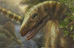 Dinosaur ancestors out of ancient Africa | Fragments of Science | Scoop.it